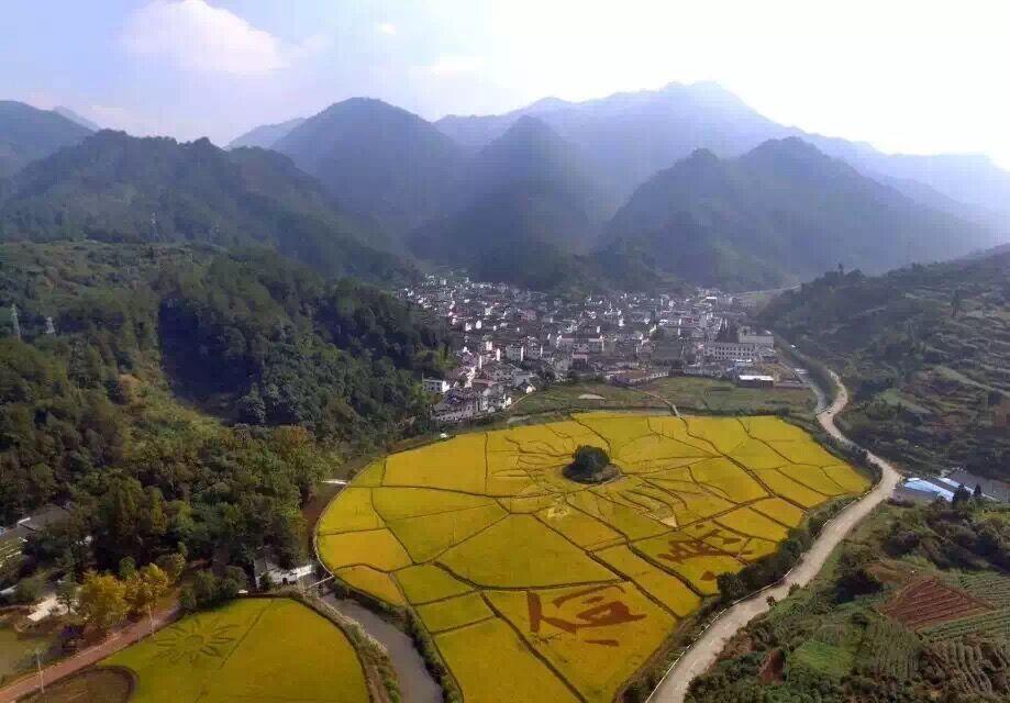 Xu Xu Homestay VungTau Vietnam